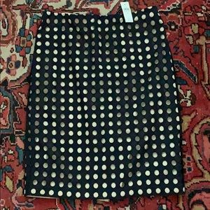 Ann Taylor Navy and Blush Skirt Size 12